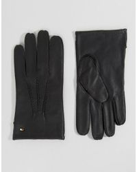 Tommy Hilfiger | Black Basic Leather Gloves for Men | Lyst
