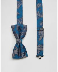 Noose And Monkey | Blue Bow Tie for Men | Lyst