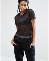 Missguided | Black Mesh T-shirt | Lyst