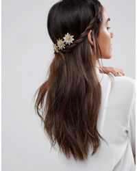 Limited Edition Tortoise Back Hair Crown - Brown Asos 1FemB1