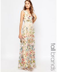 True Decadence - Multicolor Allover Embroidered Floral Maxi Dress - Lyst