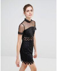 Endless Rose | Black Lace High Neck Mini Dress | Lyst