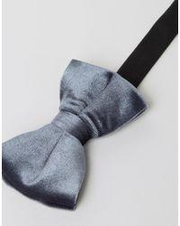 ASOS - Gray Velvet Bow Tie In Grey for Men - Lyst