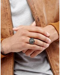 ASOS | Metallic Lion Head Ring In Burnished Gold for Men | Lyst