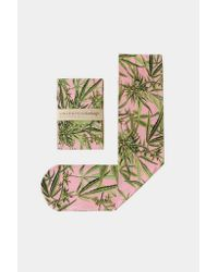 Strathcona - Green Nylon Marijuana Stocking - Pink for Men - Lyst