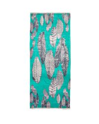 Michael Stars - Painted Feathers Scarf in Teal - Lyst