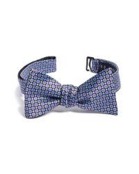 Ted Baker   Purple Dot Silk Bow Tie for Men   Lyst