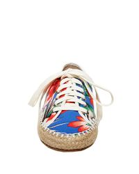 Steve Madden - Multicolor Broadwlk Espadrille Lace-up Sneakers - Lyst