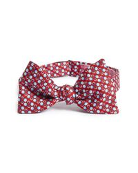 Vineyard Vines - Red 'ball And Chain' Silk Bow Tie for Men - Lyst