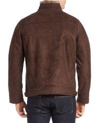 Calvin Klein | Brown Faux Fur-trimmed Faux-suede Moto Jacket for Men | Lyst