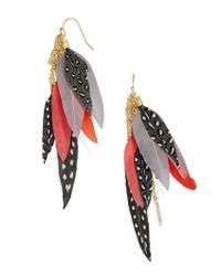 BaubleBar - Red Ravyn Feather Earrings - Lyst