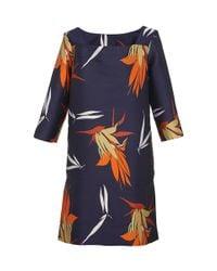 Marni - Multicolor Birds Of Paradise Print Shift Dress - Lyst