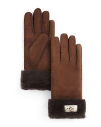 Ugg   Brown ® Turn Cuff Gloves   Lyst