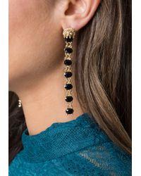 Bebe - Lion & Black Stone Earrings - Lyst