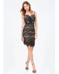 Bebe | Black Clarissa Lace Bustier Dress | Lyst
