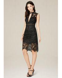 Bebe | Black Lydia Macrame Lace Dress | Lyst