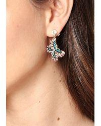 Bebe - Multicolor Butterfly Earrings - Lyst