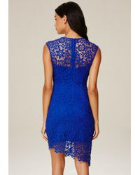 Bebe - Blue Lace Asymmetric Dress - Lyst