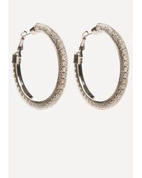 Bebe - Metallic Floating Hoop Earrings - Lyst