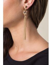 Bebe - Multicolor Leopard Duster Earrings - Lyst
