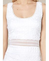 Bebe - White Molly Lace Dress - Lyst
