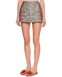 Dolce & Gabbana - Black Leopard-print Fil Coupe Mini Skirt - Lyst