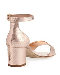 Manolo Blahnik - Pink Lauratom Snake-embossed Leather Sandal - Lyst
