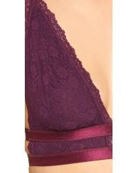 Free People | Purple Sweet Nothing Lace Call Me Darling Soft Bra | Lyst