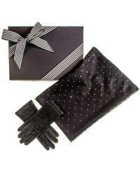 Black.co.uk - Black Cashmere And Silk Swarovski Crystal Wrap And Leather Gloves Gift Set - Lyst