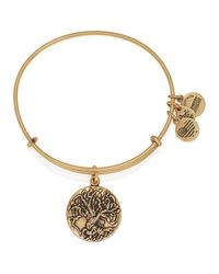 ALEX AND ANI | Metallic Tree Of Life Iii Expandable Wire Bangle | Lyst
