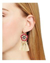 Aqua | Red Casbah Floral Beaded Fringe Drop Earrings | Lyst