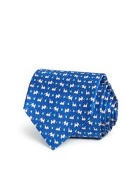 Ferragamo | Blue Puppy Butterfly Neat Classic Tie for Men | Lyst