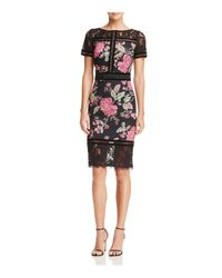 Tadashi Shoji - Black Floral Neoprene Dress - Lyst