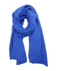 La Fiorentina - Blue Jacquard Solid Oversized Scarf - Lyst