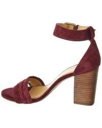 Splendid - Purple Jakey Suede Sandal - Lyst