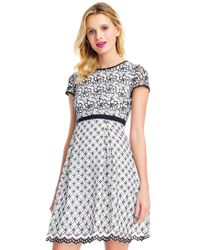 Adrianna Papell - Black Petite Lace Fit And Flare Dress - Lyst