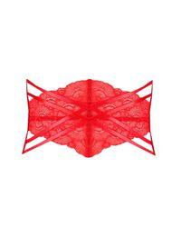 Boohoo - Red Fan Lace Strap Detail Waspie - Lyst