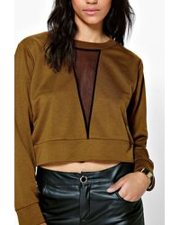Boohoo - Brown Lilly Mesh Panel Crop Sweat - Lyst