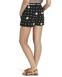 Splendid - Black Cotton Shorts - Lyst