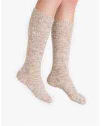 Need Supply Co. - Natural Cozy Light Knee Sock - Lyst