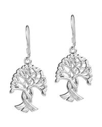 Aeravida | Metallic Intertwined Tree Of Life Branches Binding Root Sterling Silver Earrings | Lyst