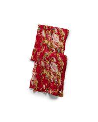 Denim & Supply Ralph Lauren   Multicolor Floral Cotton Scarf   Lyst