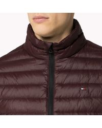Tommy Hilfiger | Purple Quilted Bomber for Men | Lyst