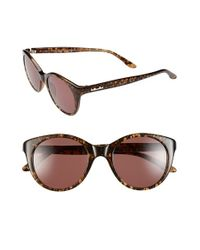 BCBGMAXAZRIA | Brown 'lacey' 48mm Sunglasses | Lyst