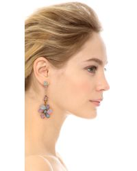 Erickson Beamon - Botanical Garden Earrings - Pink Multi - Lyst