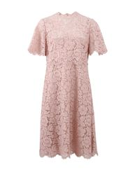 Valentino | Pink Lace Dress | Lyst