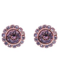Ted Baker | Purple Sully Swarovski Crystal Stud Earrings | Lyst