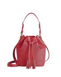 Gigi New York | Red Jenn Python-embossed Leather Bucket Bag | Lyst