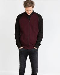Zara | Purple Piqué Bomber Jacket for Men | Lyst