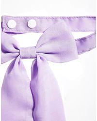 ASOS - Purple Chiffon Bow Neck Tie - Lyst